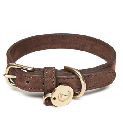 Cloud7 Leather Dog Collar Mocca - Medium