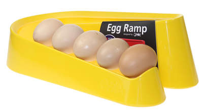 Egg Ramp Yellow