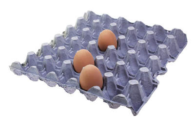Egg Trays - Purple Pack of 8