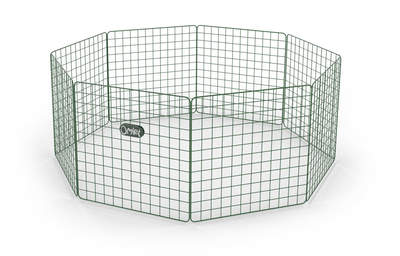 Zippi Guinea Pig Playpen Basic - Single Height