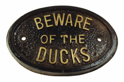 Plaque - Beware of the Ducks