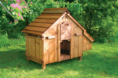 Lenham Chicken Coop - Made to Order