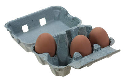 Egg Boxes - Blue Pack of 20