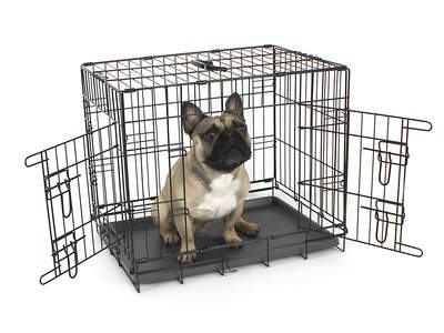 """Fido Classic Dog Crate 24"""""""
