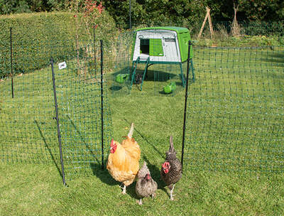 Omlet Chicken Fencing Mk2 - 105ft - inc. Gate, Poles and Guy Lines