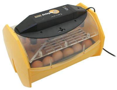 Brinsea Octagon 20 Eco Inkubator