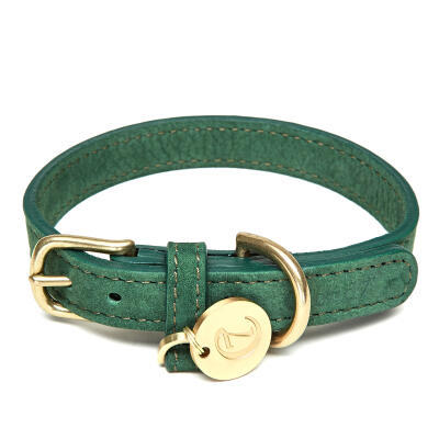 Cloud7 Leather Dog Collar Park Green - Medium