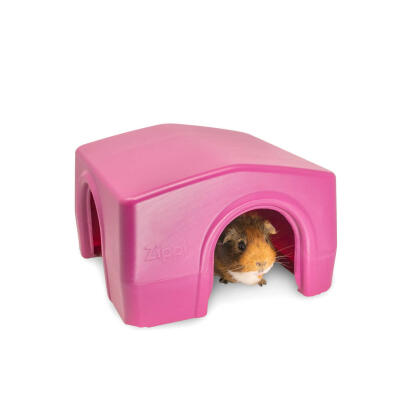 Zippi Guinea Pig Shelter - Purple