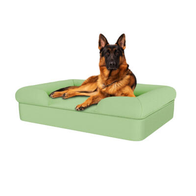 Memory Foam Bolster Dog Bed - Large - Matcha Green