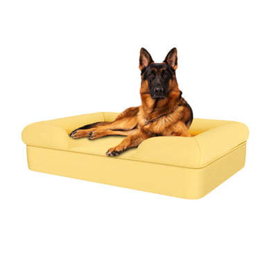 Memory Foam Bolster Dog Bed - Large - Mellow Yellow