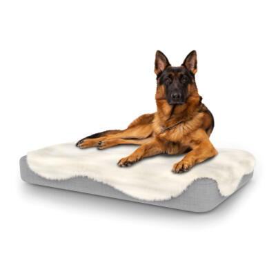Topology Dog Bed with Sheepskin Topper - Large