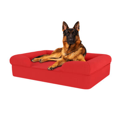 Memory Foam Bolster Dog Bed - Large - Cherry Red