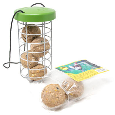 Caddi Treat Holder & Feldy Chicken Pecker Balls