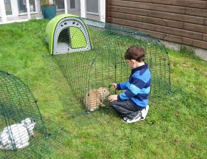 Green Rabbit Eglu at Riverside Cat Hotel