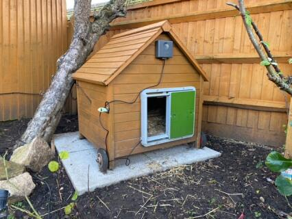 Automatic Chicken Coop Door - Green
