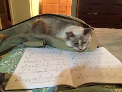Larka likes to read music while I play