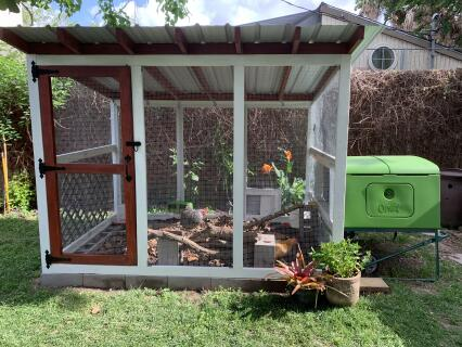 Cube attached to chicken run