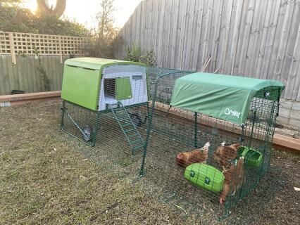 Chicken coop 3m run