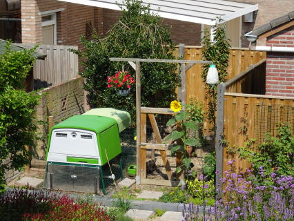 Kippenhok met ren in woonwijk in Nederland