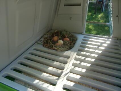 Eiersegen