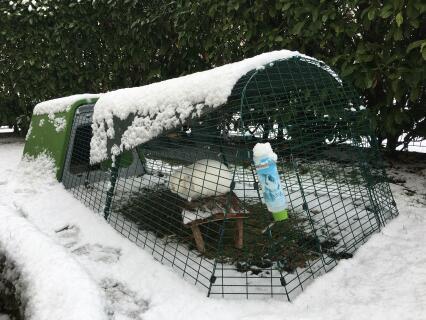 Notre clapier Eglu Go sous la neige