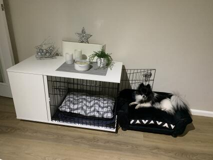 Puppy area all complete ready to have a sleep