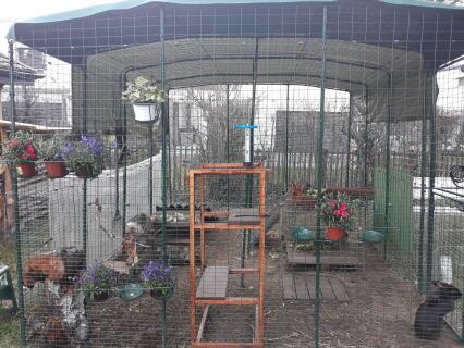 enclos fleuri