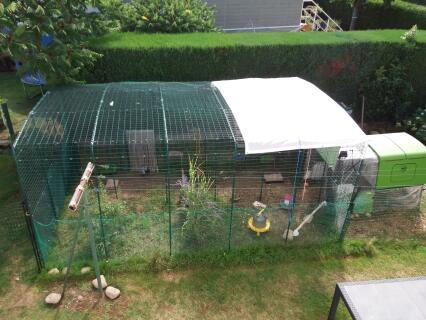 Enclos pour poules