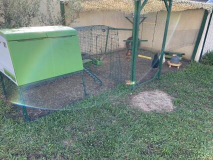 La maison de mes poules