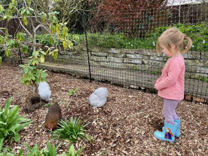 Excellent for children and bantams!