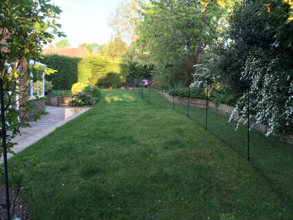 Omlet Fencing blends in with the garden