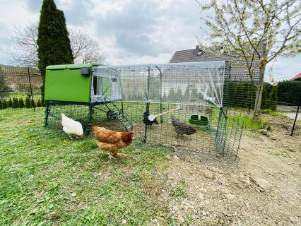 Omlet Eglu MK2 mit eklektischer Hühnertür, Sitzstange und 21 m Hühnerzaun