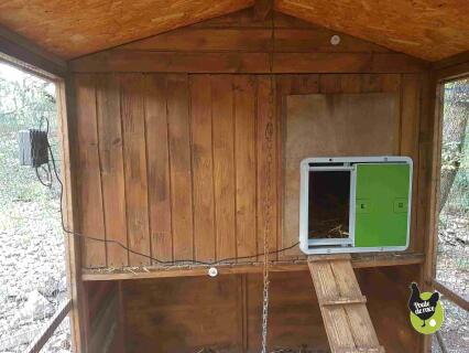 Porte Automatique Poulailler En bois