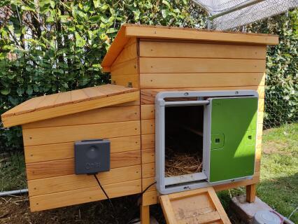 Porte automatique sur poulailler en bois