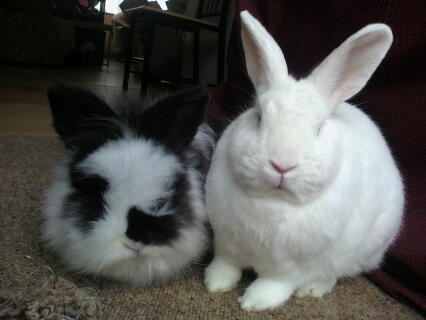 me + my husbun!