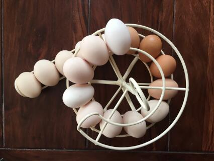 Cream egg skelter