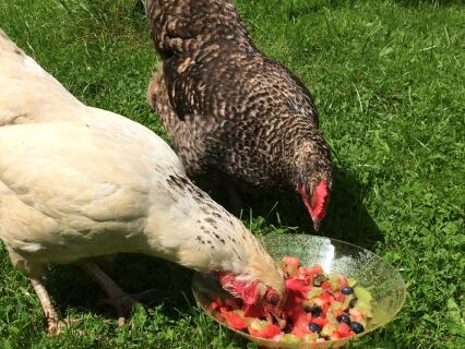 Enjoying fruit salad