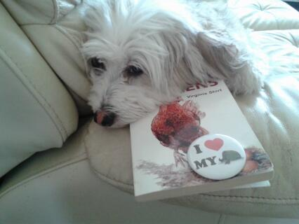 molly the dog admiring font cover of the chicken book