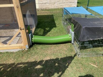 Verbindung eines selbst gebauten Hasengeheges mit einem konventionellen Freilauf
