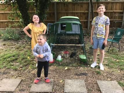 The grandchildren with our three pekin bantams