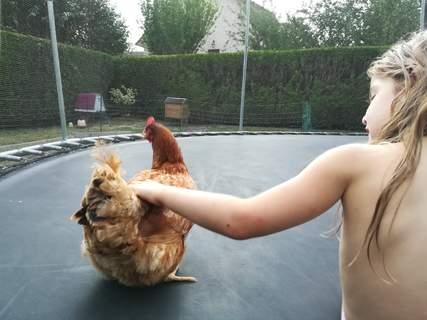 Photos très rigolotes de mes filles avec leurs poules et l'eglu go up derrière