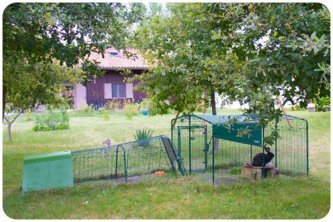 Grand enclos pour lapins