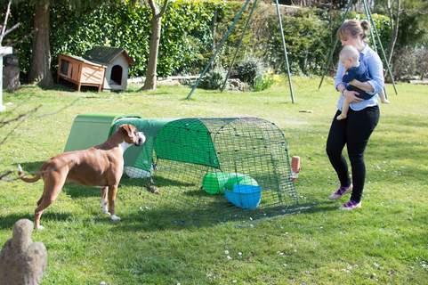 White Rabbit - Cheesecake, Black rabbit- Rufus.  Boxer - Rosie.  Baby- Annabelle. Lady - Ellie.
