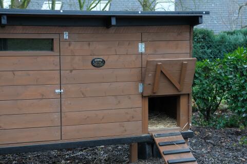 La maison des poules heureuses.