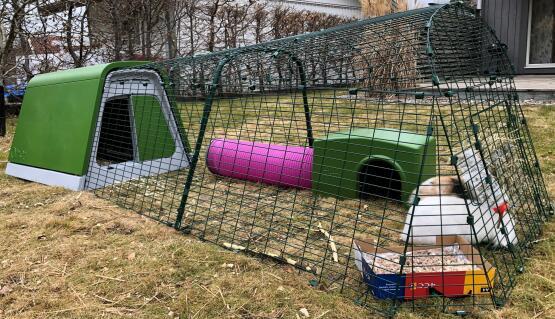Zippi-gömställe med lektunnel till kaniner i en två meters gård