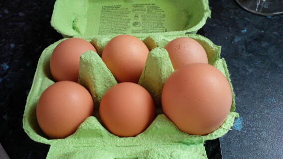 eggs of all sizes
