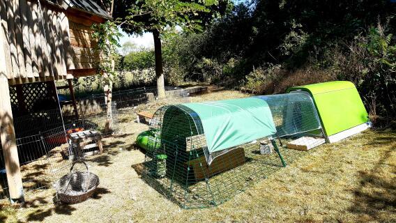 Unser Kaninchenparadies