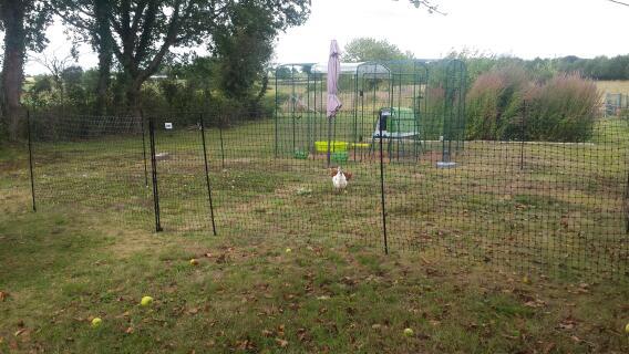Facile à installer et très bon rendu ; je l'ai installé toute seule... Mes 2 poulettes, Roussette et Princesse sont super contentes !