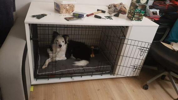 Fido Nook 36 avec cage et armoire