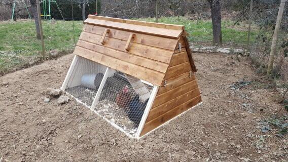 Une volière spacieuse pour mes deux poules !